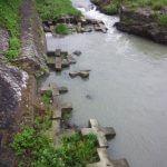 増水した賀茂川の様子